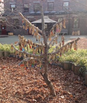 birdseed tree